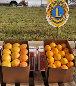 Lions Club Citrus Sale